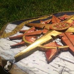 Compass shield detail