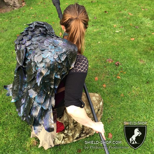 Battle Crow Back-shield for polearms