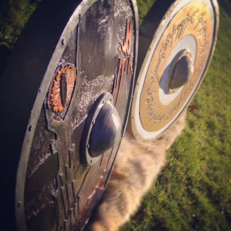 Detail shot of Lord of the Rings Plastidipped Shields