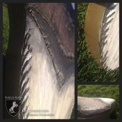 Megalodon Tooth shield details