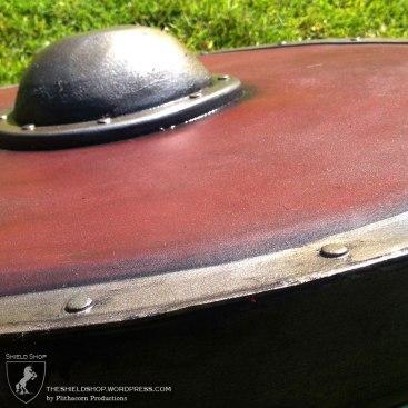 Standard shield side view
