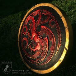 House Targaryn Plasti Dip Shield